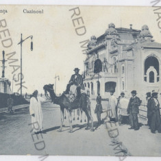 3365 - CONSTANTA, Cazino, cammel - old postcard - unused, Necirculata, Printata