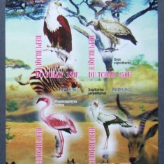 TCHAD 2012 - FAUNA AFRICA 4 VALORI IN M/SH NEDANTELATA, NEOBLITERATA - PP 805