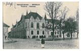 3355 - Alba, SEBESUL SASESC, Primaria - old postcard - unused, Necirculata, Printata