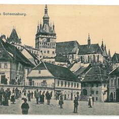 3345 - Mures, SIGHISOARA, Market - old postcard - unused - Carte Postala Transilvania 1904-1918, Necirculata, Printata