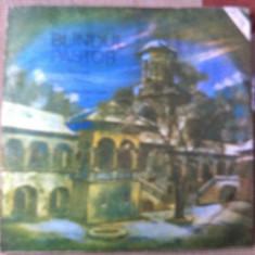 Teodora Paunescu Tuca Blandul pastor voce album vinyl disc lp Muzica Religioasa electrecord, VINIL