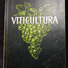 VITICULTURA - ING. TH. BEJAN - ING. V. DVORNIC - EDITURA AGROSILVICA - 1954