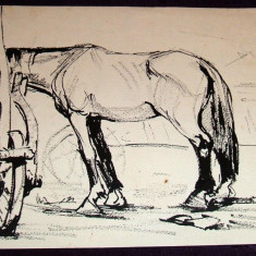 Cal la targ - Tus anii 60, grafica ecvestra ilustratie de carte - Tablou autor neidentificat, An: 1960, Animale, Cerneala, Impresionism