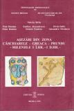 Asezari din zona Cascioarele –Greaca – Prundu – mileniile I IHr – I DHr, Alta editura, 1996