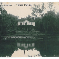 3190 - Olt, CARACAL, Terasa Parcului - old postcard, real PHOTO - used - Carte Postala Oltenia 1904-1918, Circulata, Printata