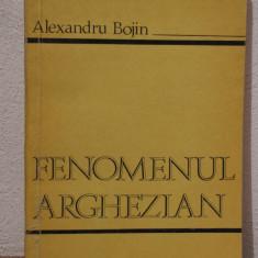 FENOMENUL ARGHEZIAN de ALEXANDRU BOJIN - Studiu literar