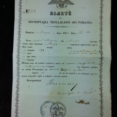 VECHI DOCUMENT 1858 - EXPORT DE CEREALE DIN ROMANIA - STAMPILA DEOSEBIT DE RARA - Pasaport/Document
