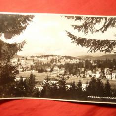 Ilustrata -Predeal - Cioplea, interbelica - Carte Postala Transilvania dupa 1918, Necirculata, Fotografie