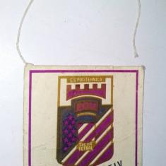 Fanion Politehnica Timisoara sectia fotbal ( deteriorat) - Fanion fotbal