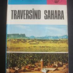 IOAN SERBANESCU - TRAVERSIND SAHARA