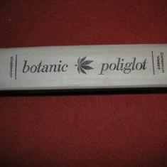 Dictionar Botanic Poliglot - Latina, Romana, Engleza, Germana, Franceza-C. Vaczy