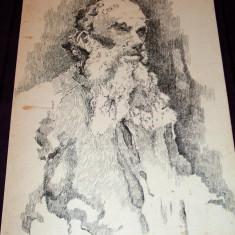 Batran intelept - Portret in penita, tus anii 50, grafica ilustratie de carte - Tablou autor neidentificat, An: 1960, Portrete, Cerneala, Impresionism