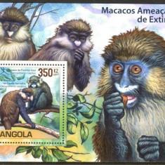 ANGOLA 2011 MAIMUTE, MACACI - Timbre straine, Nestampilat