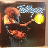 TED NUGENT - THE FIRST  ALBUM (1975 / CBS Rec / HOLLAND) - Vinil/Vinyl/ROCK