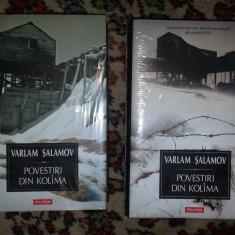 Povestiri din Kolima / Varlam Salamov 2 volume - Nuvela