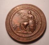 Medalie Concursul General Anual Cooperativa Constructorilor si Meseriasilor 1894