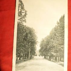 Ilustrata Ramnicu-Valcea circulat 1925, Ed.Libr.Atanasiu si Petrescu - Carte Postala Muntenia dupa 1918, Circulata, Printata