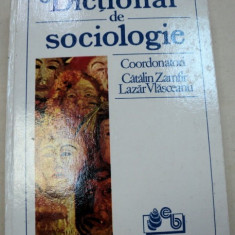 DICTIONAR DE SOCIOLOGIE-CATALIN ZAMFIR, LAZAR VLASCEANU 1993 - Carte Sociologie