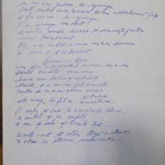 EUGEN JEBELEANU VERSURI, FILA MANUSCRIS