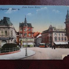 Carte postala veche - Nagyvarad - Oradea - piata Regina Maria - Carte Postala Banat dupa 1918, Circulata, Printata