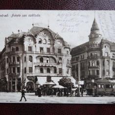 Carte postala veche - Oradea - Nagyvarad - Carte Postala Banat dupa 1918, Circulata, Printata