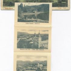 2967 - BAIA-MARE, multi vue - 10 mini old postcards - unused - Carte Postala Maramures 1904-1918, Necirculata, Printata