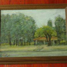 Tablou rama de lemn cu sticla - pictura in ulei, semnat - 1983 peisaj Herastrau - Pictor strain, Peisaje, Realism