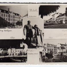 ZALAU MOZAIC-ZILAH, STATUIA VESSELENYI, COLEGIU, BISERICA, CASINO, - Carte Postala Crisana dupa 1918, Circulata, Fotografie