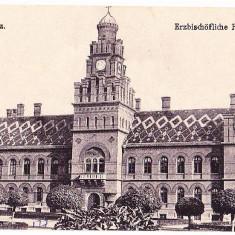 Cernauti (7) - Carte Postala Bucovina 1904-1918, Necirculata, Printata
