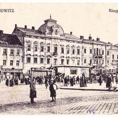 Cernauti (4) - Carte Postala Bucovina 1904-1918, Necirculata, Printata