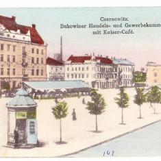 Cernauti (1) - Carte Postala Bucovina 1904-1918, Necirculata, Printata