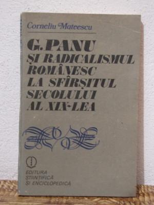 G.PANU SI RADICALISMUL ROMANESC LA SFARSITUL SECOLULUI AL XIX-LEA foto