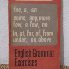 ENGLISH GRAMMAR EXERCISES-D. Chitoran - Curs Limba Engleza