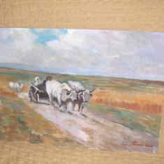 Tablou- Car cu boi