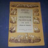CRESTEREA PASARILOR DE APA RATE SI GASTE