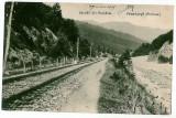 2127 - Prahova, VALEA LARGA, train on railway - old postcard - used 1905, Circulata, Printata