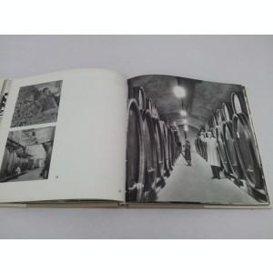 ALBUM FOTO: IMAGINI PRAHOVENE 1974