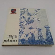 ALBUM FOTO: IMAGINI PRAHOVENE 1974 - Carte Epoca de aur
