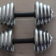 Gantera / Gantere 30kg - 15 Kg / Brat x 2 Buc