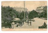 1018 - GIURGIU, Market CAROL, carriage - old postcard - unused