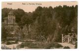 1838 - Arges, PITESTI, Trivale Park - old postcard - used  - 1919, Circulata, Printata