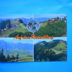 HOPCT 20621 GERMANIA RAUSCHBERG / STAMPILOGRAFIE FLOARE DE COLT [NECIRCULATA], Printata