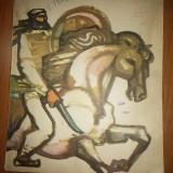 """Carte pt copii """"cuib de vulturi"""" din anul 1968 - Carte educativa"""