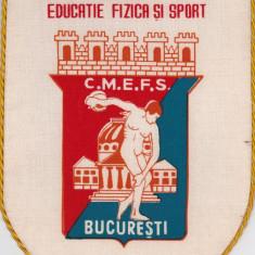 Fanion Consiliul Municipal Educatie Fizica si Sport Bucuresti