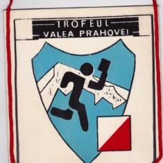 """Fanion Trofeul """"Valea Prahovei"""" Romania 1987"""