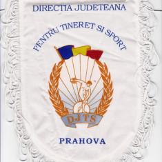 Fanion Directia Judeteana Tineret si Sport PRAHOVA (DJTS)