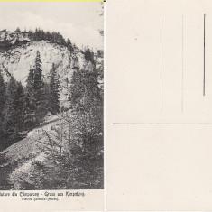 Campulung Moldovenesc ( Bucovina, Suceava ) - Carte Postala Bucovina 1904-1918, Necirculata, Printata