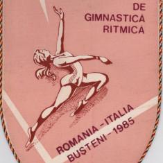 Fanion Concurs International de Gimnastica Ritmica: Romania-Italia (Busteni `85)
