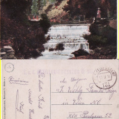 Campulung Moldovenesc ( Bucovina, Suceava )-cenzura WWI - Carte Postala Bucovina 1904-1918, Circulata, Printata