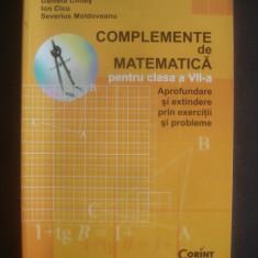 COMPLEMENTE DE MATEMATICA PENTRU CLASA A VII A - Culegere Matematica